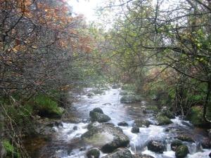 River_Glendaisan
